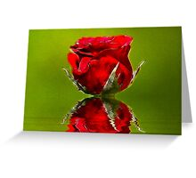 Red Rose #1 Greeting Card