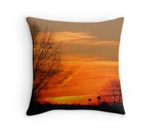 2 Water Towers Throw Pillow