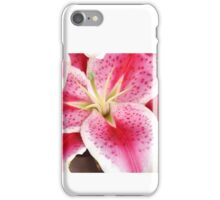 Pink Lily Macro Close Up iPhone Case/Skin