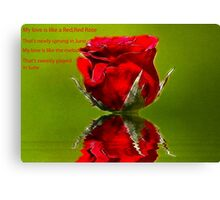 Red Red Rose #2 Canvas Print