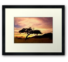 Embrace the day  Framed Print