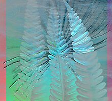 Old paper and silver fern by Heike Schenk Arena