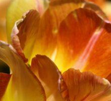Spring Tulip Sticker