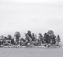 Flathead Island by Rodney55