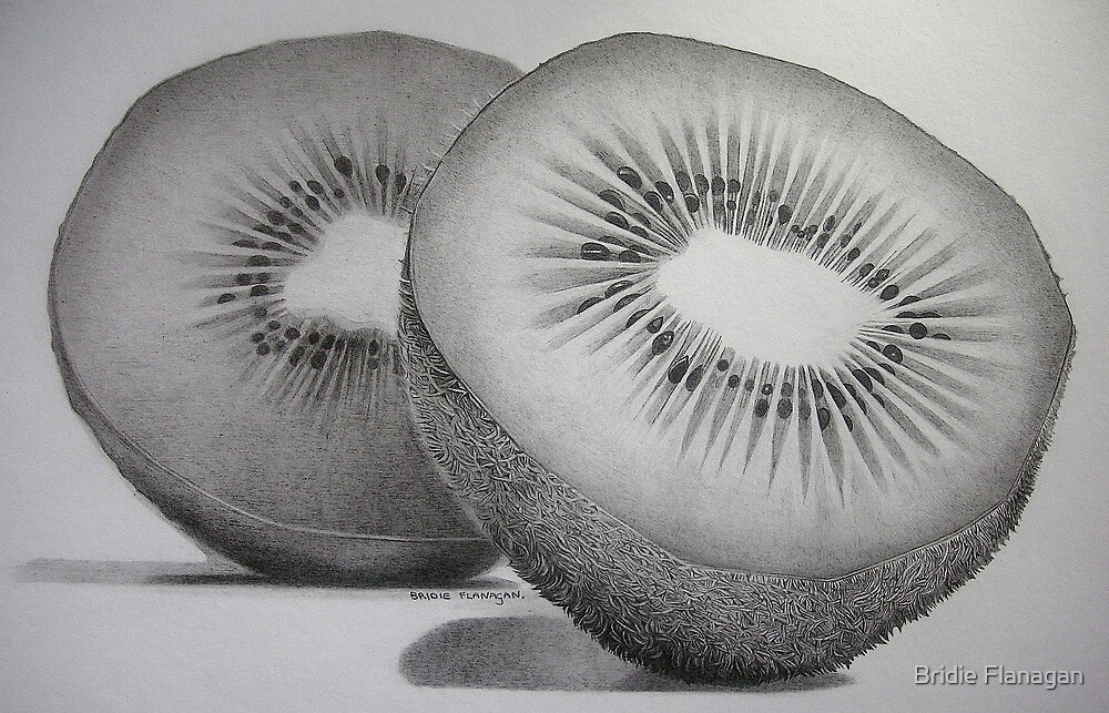 Kiwi by Bridie Flanagan by Bridie Flanagan