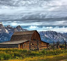 Mormon Row Barn, Grand Teton NP by Teresa Zieba