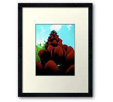 dream castle Framed Print