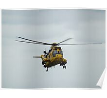 Last flight of the Seaking Poster