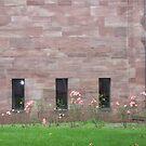 Rose roses on rose stone by nealbarnett