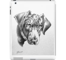 "Black Labrador - ""You're Kidding!"" iPad Case/Skin"