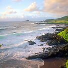 Hana Coast Maui by kevin smith  skystudiohawaii