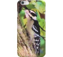 Hunting Woodpecker iPhone Case/Skin