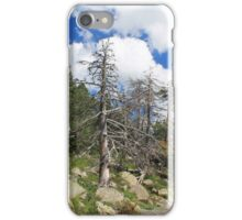 Lightning Struck Trees In Spain iPhone Case/Skin
