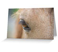 Pony Eye Greeting Card