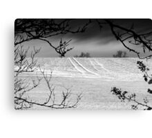 Trees Frame Trees BW Canvas Print