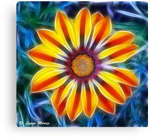 Mystical Marigold Canvas Print