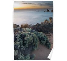 Beachscape from the South Australia limestone coast  Poster