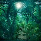 The Secret Path by Celtic Mystery