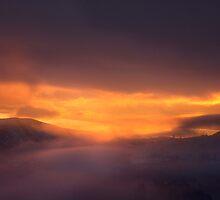 Cashmere January Sunrise by Aimee Stewart