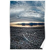 Feather on the Shore: Salton sea Poster