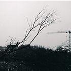 Dead Land by Matt Roberts
