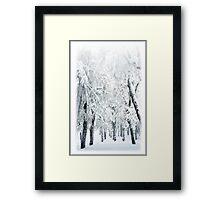 Xtreme White 11 Framed Print