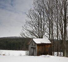 Barn in the quiet by Rachelle Vance