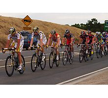 leaders of the bunch Photographic Print