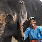 Elephant and Friend, Hua Hin, Thailand by johnrf