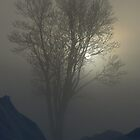 Morning Fog by Jeannine St-Amour