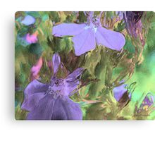 Conspicuous (After) Canvas Print