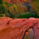 Red Rock Reflections by DawsonImages