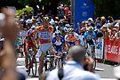 2010 Santos Tour Down Under Stage 2 Gawler to Hahndorf winner Andre Greipel by DavidIori