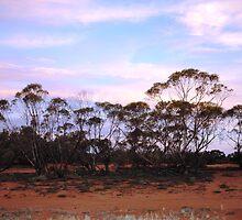 Turlee Station sunset by John Carroll