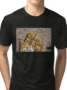 Tombstone with Yellow Lichen Tri-blend T-Shirt