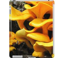 Who's Been Eating The Orange Delights?! iPad Case/Skin