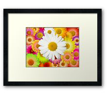 Great Camomile Field Framed Print