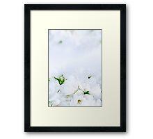 Romantic Jasmine Framed Print