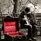 Central Park Busker by Aaron Corr