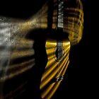 Love Illuminated by Paul Louis Villani