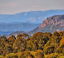The Land  From Snowy River - Mt Stirling , Australia - The HDR Experience by Philip Johnson