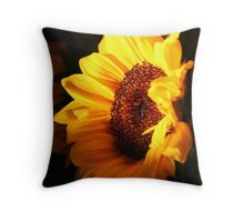 ~Here Comes the Sun~ Throw Pillow