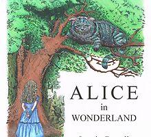 Modern Alice in Wonderland Book Cover by AKingAmongArt