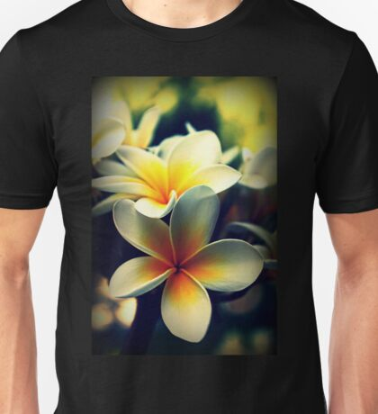Memories Of A Summer Gone By Unisex T-Shirt