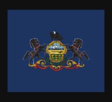 Pennsylvania USA State Flag Bedspread Philadelphia T-Shirt Sticker Kids Clothes