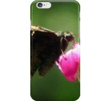 Common Sootywing (Pholisora catullus) iPhone Case/Skin