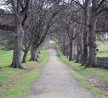 'The Long Road' - Port Arthur, Tasmania by sparkographic
