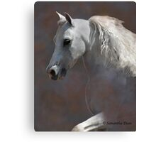 Jimmy Crack Corn Canvas Print