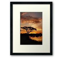 Okavango Delta sunset Framed Print