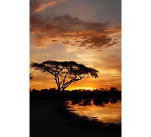 Okavango Delta sunset Photographic Print